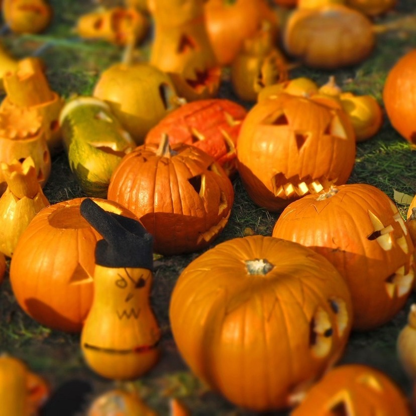 Card pumpkin 562409 1280